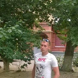 Денис, 29 лет, Волгоград