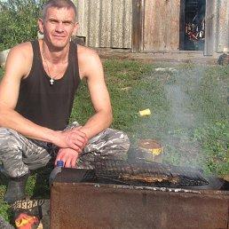 Виталий, 41 год, Башмаково