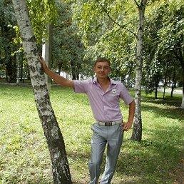 Вадим, 34 года, Носовка