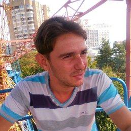Андрей, 28 лет, Лебедин