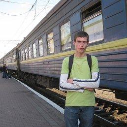 Александр, 28 лет, Смела