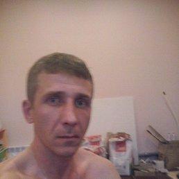 виталий, 39 лет, Иваново-Вознесенск