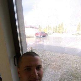 Дмитрий, Васильков, 28 лет