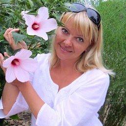 Наталья Собинина, 44 года, Воронеж
