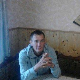 Гриневич, 36 лет, Москва