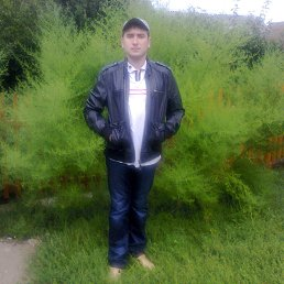 Коля, 29 лет, Калуш