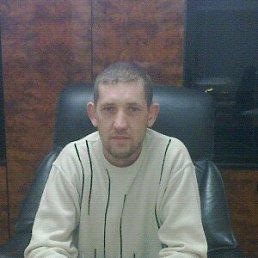Павел, 35 лет, Курская
