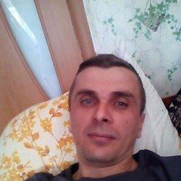 Евгений, 40 лет, Новоминская