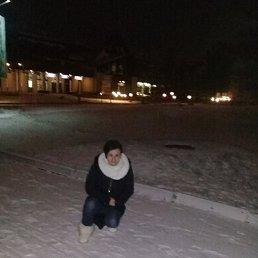 Ольга, 39 лет, Яхрома