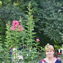 Елена, 52 года, Азов