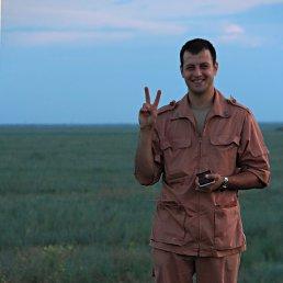 Алексей, 28 лет, Фролово