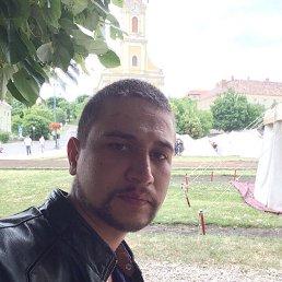 Serega, 29 лет, Мелитополь