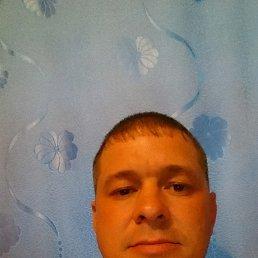 Денис, 37 лет, Сковородино