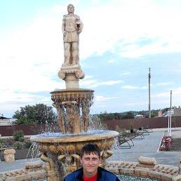Андрей, 32 года, Димитров