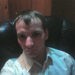 Андрей, 31 год, Ялта