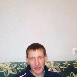 денис, 38 лет, Осинники