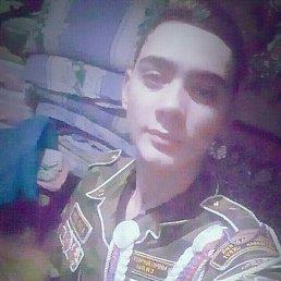 Сергей, 17 лет, Ростов