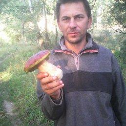 микола, 47 лет, Дубровица