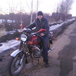 РОМА, 30 лет, Кимовск