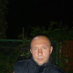 Андрій, 35 лет, Косов