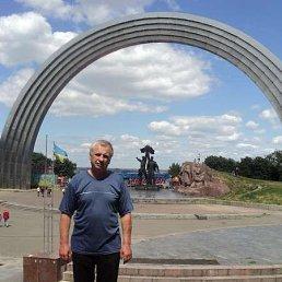 Александр Тимощук, 56 лет, Дубно