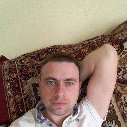 Фото Ник, Львов, 35 лет - добавлено 25 апреля 2018