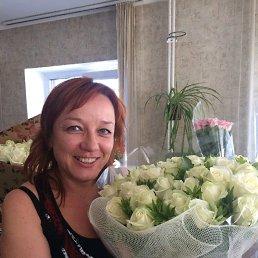 Svetlana, 49 лет, Харьков