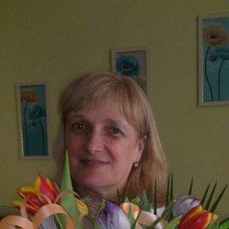 Степяк, 55 лет, Ровно