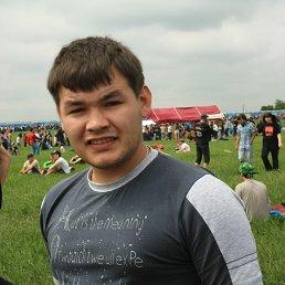 Дмитрий, 29 лет, Димитровград