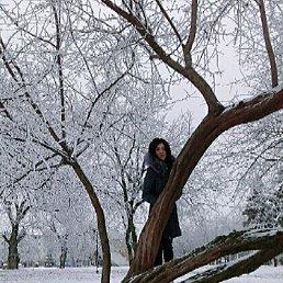 yulia, 29 лет, Нальчик