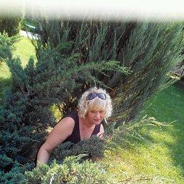 Оксана, 41 год, Черкассы