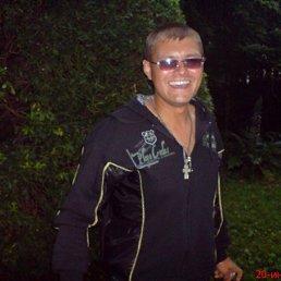 Илья, 34 года, Волжский