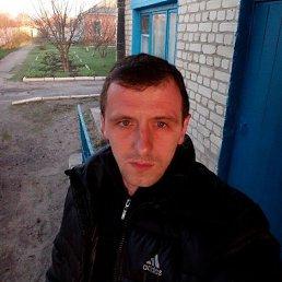 Александр, 35 лет, Волчанск