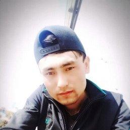 Нурик, 27 лет, Свободный