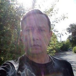 Владимир, 34 года, Тамбов