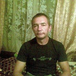 Алексей, 52 года, Малая Вишера