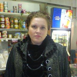 Елена, 38 лет, Свердловск