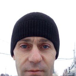 Александр, 42 года, Кшенский