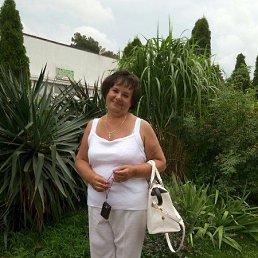 Галина, 64 года, Клин