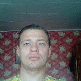 Андрей, 28 лет, Богородицк