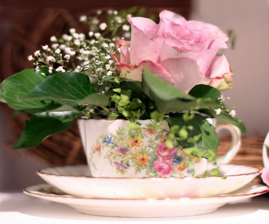 гифы со средой цветами таунхаус