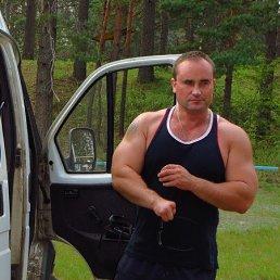 Макс, 44 года, Великий Новгород