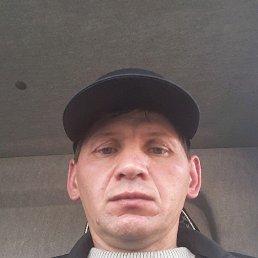 Dmitry, 42 года, Заиграево