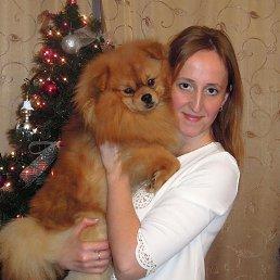 анна, 35 лет, Нижний Новгород