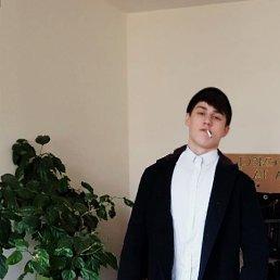 Даниил, 20 лет, Берегово