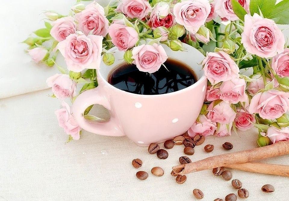 картинки чашка кофе прекрасного настроения всех фото