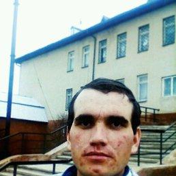 Тарас, 25 лет, Рогатин