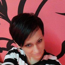 Елена, 44 года, Кобрин