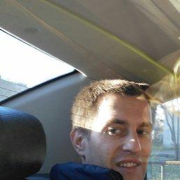 Константин, 29 лет, Приморск