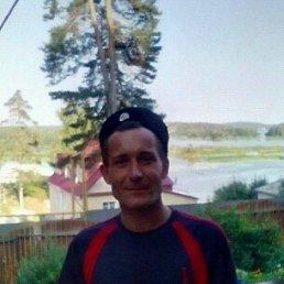 Евгений, 45 лет, Вишневогорск